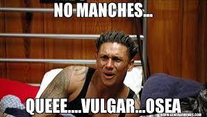 Vulgar Memes - no manches queee vulgar osea pauly d plays dumb generar