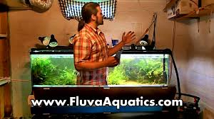 fluval led light 48 48 led plant light unboxing by fluval grows plants great youtube