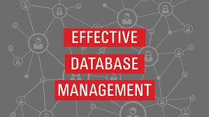 no one can serve 2 systems effective database management