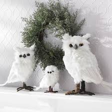 12 best white owl for my images on white owls