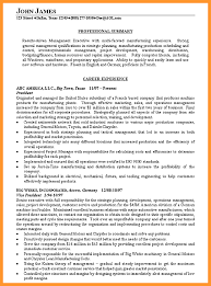 Professional Resume Summary Examples by 6 Resume Summary Examples Buisness Letter Forms