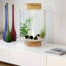 The  Best Home Aquarium Ideas On Pinterest Amazing Fish Tanks - Home aquarium designs