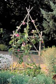 how to make a simple garden trellis sunset