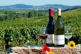 Conservation Vin Rouge Tout Savoir Sur Le Vin De Bourgogne