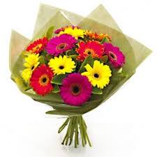 gerbera bouquet bright beautiful gerbera bouquet same or next day gift