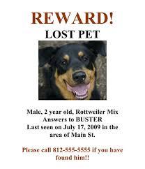 9 best images of lost dog poster lost missing dog lost dog