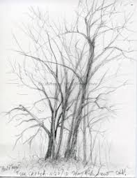 tree sketches paintings mary mcandrew