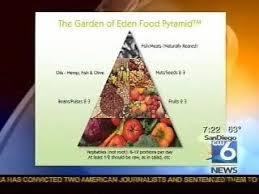 healthy eating or junk food what is a good diet video dailymotion