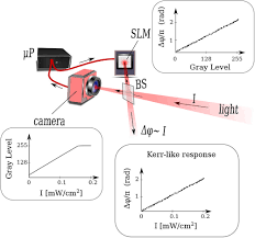 enhanced phase measurements from self adaptive holography spie