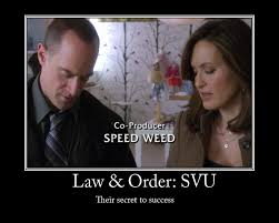 Law And Order Meme - law and order svu by temari25 on deviantart