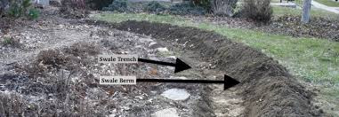 How To Build A Pond In Your Backyard by How To Construct A Swale In The Residential Landscape Tenth Acre