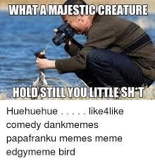 Huehuehue Meme - search huehuehue memes on me me