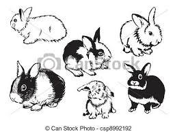 rabbits illustrations and clip art 55 567 rabbits royalty free