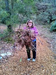 Botanical Gardens Volunteer by Volunteer Spotlight Kaul Wildflower Garden Volunteer Meg Barnum