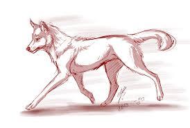 red wolf by mayhwolf on deviantart