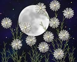 Moon Flowers Moon Flowers 3d And Cg U0026 Abstract Background Wallpapers On