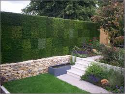 Back Garden Ideas Attractive Wall From Grass In Back Garden Ideas 2828