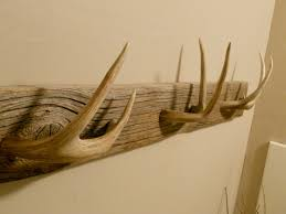 fascinating antler coat hooks 81 in home interior decoration with