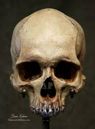 328 best what are no more images on skulls
