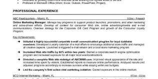 digital marketing objective resume digital marketing manager