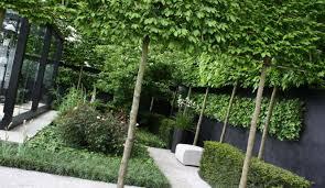 garden tropical landscape ideas u2013 home design and decor