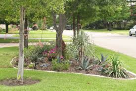 water efficient landscape renovation u2022 verdant grounds
