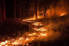 Wildfire Documentary by Fire Chaser Timelapse Project Captures The Power And Unimagined