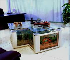 Terrarium Coffee Table by Fish Tank Formidable Large Square Fish Tank Pictures Design Tanks