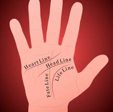 describe it what does your palm reveal about your personality playbuzz