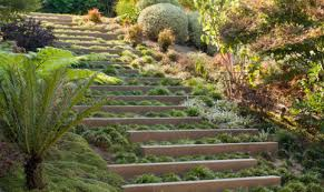 hardscape ideas for slopes stone steps in a landscape walkway