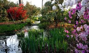 Garden Botanical Norfolk Botanical Garden Events Education And Nature