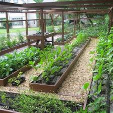 french vegetable garden design plans elegant best 20 potager