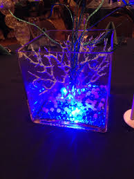 under the sea centerpiece coral led water pearls magical