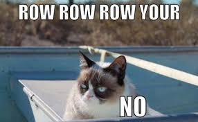 Cute No Meme - 10 of the funniest grumpy cat memes