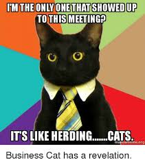 Herding Cats Meme - im the only one that showed up this meeting it s like herding cats