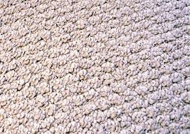 what are the advantages of carpet flooring with pictures
