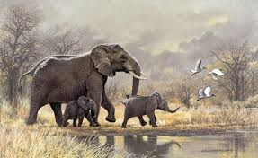 index of pic oil painting styles on canvas animals elephant
