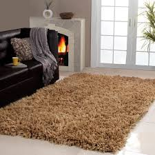 Area Rug 3x5 Affinity Home Collection Cozy Shag Area Rug 3 X 5 Free Brilliant