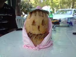 patate en robe de chambre notre patate en robe de chambre 4 guingais à arcachon