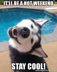 Stay Cool Meme - it ll be a hot weekend stay cool tgif husky meme generator