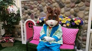 the easter bunny awaits you at fair oaks mall fairfax family fun
