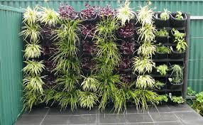 vertical gardens vertical gardens adelaide feature walls for small gardens