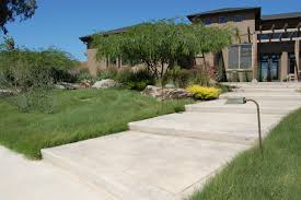 the un importance of lawn habitat network