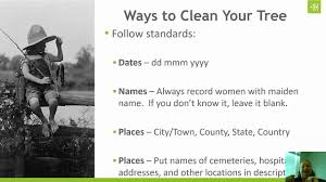 Hints On How To Clean Ways To Clean Up Your Family Tree Youtube