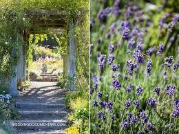 Uc Berkeley Botanical Gardens 97 Best In The Garden Images On Pinterest Botanical Gardens