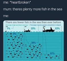 Fish In The Sea Meme - plenty of fish in the sea huh funny memes random pictures daily