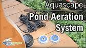 Aquascape Sfa3000 Aquascape Pond Air 2 Aerator Youtube