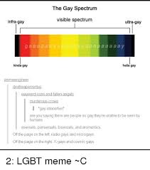 Ultra Gay Meme - the gay spectrum visible spectrum infra gay ultra gay g