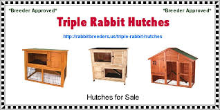 Sale Rabbit Hutches Triple Rabbit Hutches Usa Rabbit Breeders