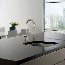 Water Ridge Pull Out Kitchen Faucet Delightful Stunning Costco Kitchen Faucet Hc Kitchen Faucet Costco
